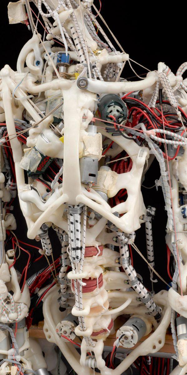 ECCERobot Project