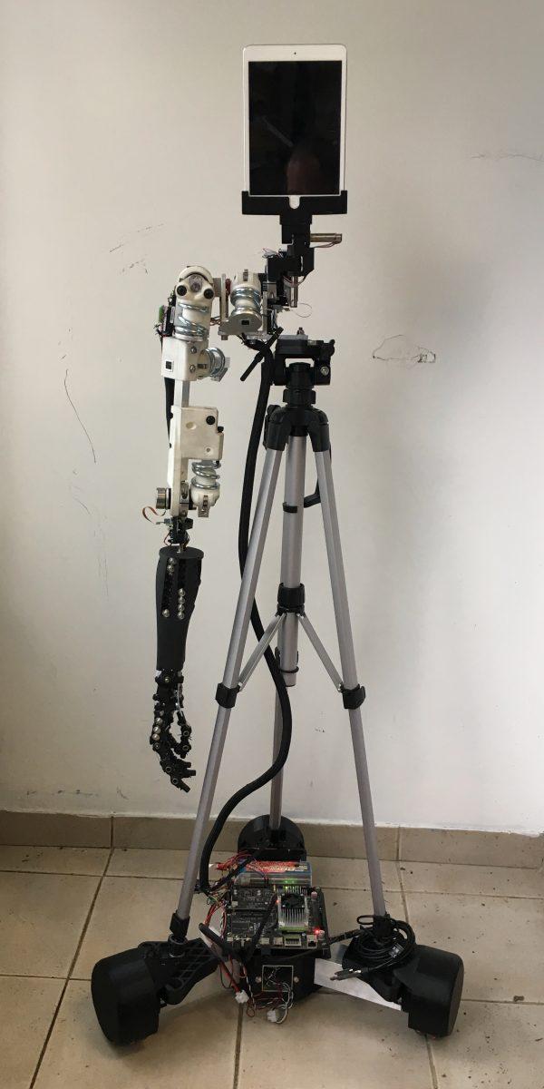 SEA Mobile Arm